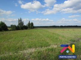 Działka rolna Zielona Góra - Zawada 3,61 ha
