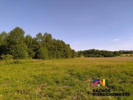 Działka przy lesie w Droszkowie na sprzedaż!!!