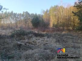Nieruchomości Zielona Góra - Na sprzedaż działki budowlane w Radomii!!!