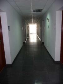 Powierzchnia biurowa do wynajęcia 30zł za m2